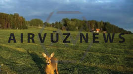 AV News: Your Hunting Land: The New No-Drone Zone?