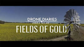 Drone Diaries - Week Nine: Fields of Gold
