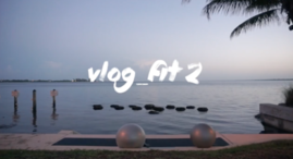 VLOG_FIT 2 PARTNER STABILITY ARMS & CORE