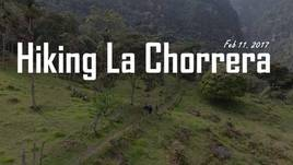 Hiking through the Andean Cloud Forest  - La Chorrera