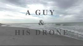 A Guy and His Drone - Beach Birdies