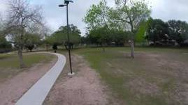 flying around the disc park with a dog