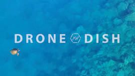 The Drone Dish: anthonytori