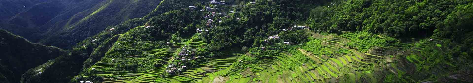 <div> <p><strong>Here's a travel tip from us here at <a href=&quot;https://www.airvuz.com&quot;>AirVūz</a>...Grab your drone and get over to the Philippines NOW!</strong></p> <p>The Philippines, located in Southeast Asia, is a perfect destination to hop from island to island, city to city, and UNESCO site to UNESCO site to get that drone footage.&nbsp; This country has over a thousand islands, including <a href=&quot;https://www.airvuz.com/video/Palawan-Philippines---4K-Drone-Film?id=5913d6cf92c9d527fe2000df&quot;><strong>Palawan</strong></a>&nbsp;and&nbsp;<strong><a href=&quot;https://www.airvuz.com/video/A-Day-in-Coron?id=5966857c3b84e93f55cfb12a&quot;>Coron</a>,</strong>&nbsp;that are surrounded by sparkling seas, tropical jungles, and heavenly beaches.&nbsp; If that's not enough to entice you, then perhaps the bustling citylife of&nbsp;<strong><a href=&quot;https://www.airvuz.com/video/Manila-New-Years-Eve-2018?id=5a4baeebc9877840bf9ac461&quot;>Manila</a>&nbsp;</strong>is more your thing? Or there is always the remarkable steps of the&nbsp;<strong><a href=&quot;https://www.airvuz.com/video/Batad---Queen-of-All-Rice-Terraces?id=5916802c8efcd769947a3d16&quot;>Ifugao Rice Terraces</a>&nbsp;</strong>to capture from an aerial view! Whether you're exploring&nbsp;<strong><a href=&quot;https://www.airvuz.com/video/BORACAY-PHILIPPINES--Rozes---BURN-WILD-Young-Bomb-Remix--DJI-Mavic-Pro--GoPro?id=595cfa844548f9144fb9bf1f&quot;>Boracay</a></strong>,&nbsp;<a href=&quot;https://www.airvuz.com/video/Osme%C3%B1a-Peak-Cebus-Highest-Peak?id=59c49e47ab2e677a6dcfdf4e&quot;><strong>Cebu</strong></a>, or&nbsp;<strong><a href=&quot;https://www.airvuz.com/video/BOHOL--Revisited?id=593706321ddade7d90a6844f&quot;>Bohol</a>&nbsp;</strong>make darn sure you capture those spots from above and share your drone videos with the community here on&nbsp;<strong><a href=&quot;https://www.airvuz.com&quot;>AirVūz</a>!</strong></p> <div>Check out all the aerial footage of the Philippines in the colle